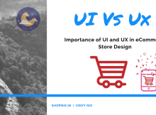 Importance of UI and Ux in eCommerce business